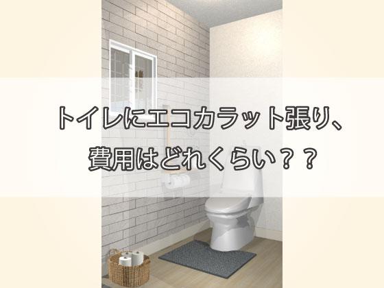 トイレにエコカラット張り、費用はどれくらい?